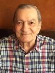 Luigi G. Saia