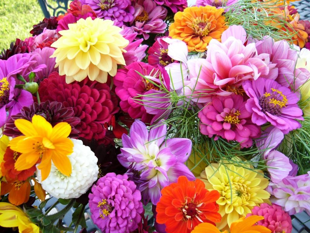 Eleanor Little Obituary Bonita Springs Florida Obituaries For